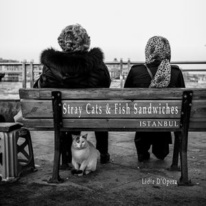 Stray Cats & Fish Sandwiches, Istanbul